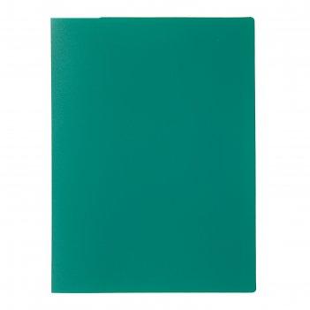 Папка с 30 прозрачными вкладышами а4, 500 мкм, calligrata, песок, зелёная