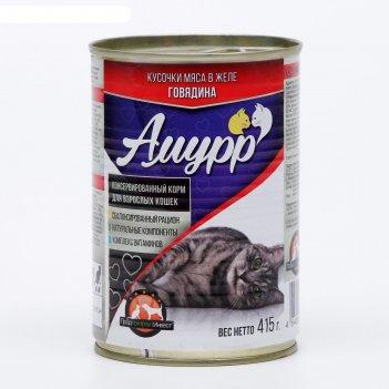 Влажный корм амурр для кошек, говядина в желе, ж/б, 415 гр