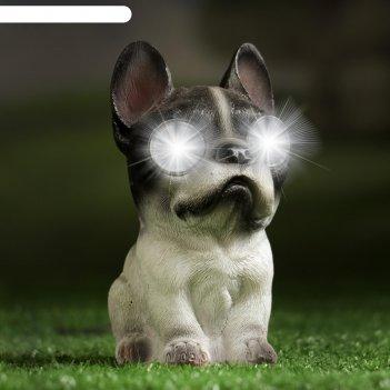 Садовый светильник бульдожек на солнечной батарее, 14см