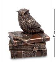 Шкатулка мудрая сова