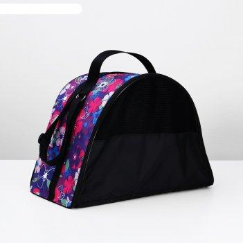 рюкзаки и сумки