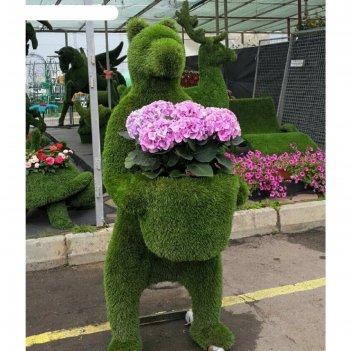 Топиар фигура медведь услужливый с ведром под цветы