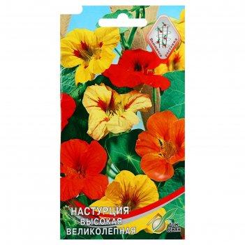 Семена цветов настурция великолепная дом семян, высокая, о, 9 шт