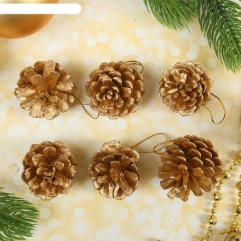 Набор природного декора золотые шишки, набор 6 шт.