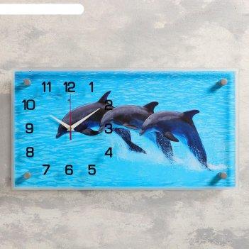 Часы настенные, серия: море, дельфины, 26х52  см, микс