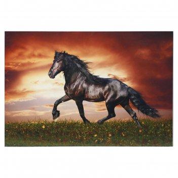 Картина лошадь 40*60 см