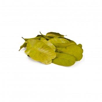 Листья мандиока большой, зелёный 50 г