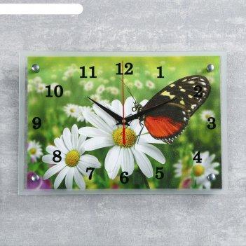 Часы настенные, серия: цветы, бабочка и ромашки, 25х35  см, микс