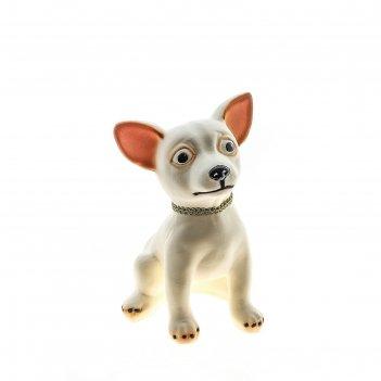 Копилка собака чихуахуа большая, покрытие флок, белая