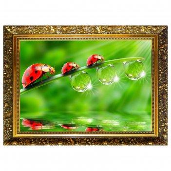 Алмазная мозаика капельки росы  29,5x20,5см, 25 цветов nr- 13