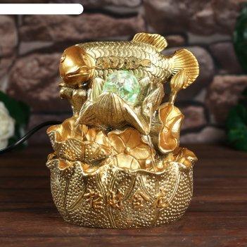 Фонтан настольный от сети, подсветка золотой карп с монетами золото 21х15х