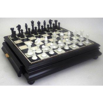 Шахматы завоеватель