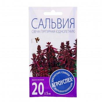 Семена цветов сальвия свеча пурпурная f1 о 10 шт