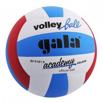 Мяч волейбольный gala academy, р.5, бело-сине-красный