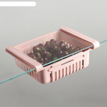 Полка подвесная в холодильник, раздвижная 23(28)х16,5х8 см, цвета микс