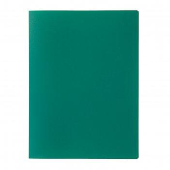 Папка с 20 прозрачными вкладышами а4, 500 мкм, calligrata, песок, зелёная
