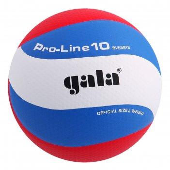Мяч волейбольный gala pro-line 10, р.5, бело-голубо-красный