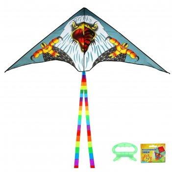 Воздушный змей орел с леской