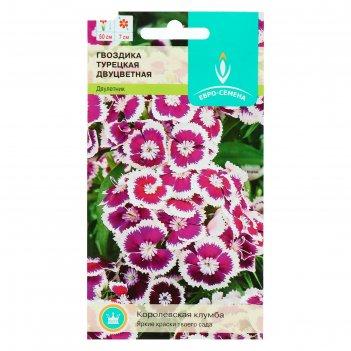 Семена цветов гвоздика турецкая двухцветная, 0,3 г