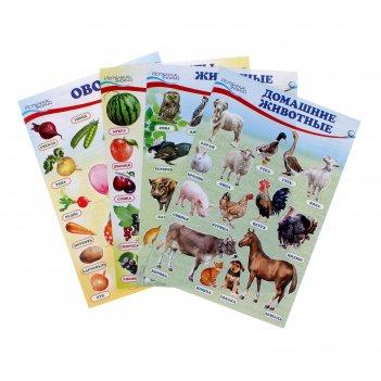 Набор мини-плакатов домашние, лесные животные,фрукты и ягоды, овощи с зада