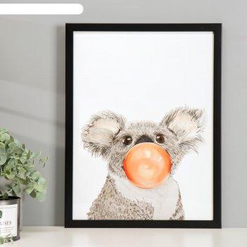 Постер пластик коала 30х40 см