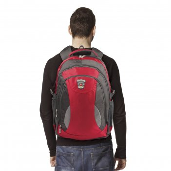 Рюкзак для школы и офиса streetball 1, 48х34х18см, объем 30 л, ткань