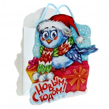 Пакет-открытка снегирь