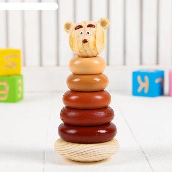 Пирамидка медвежонок   504