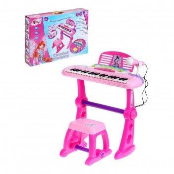 Winx синтезатор волшебный , свет,звук, с микрофоном, со стульчиком №sl-001
