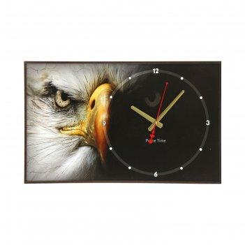 Часы настенные, серия: животные, орёл, 37х60 см
