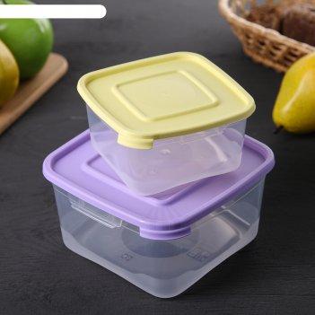 Набор пищевых контейнеров каскад, 2 шт: 460 мл; 1 л, цвет микс