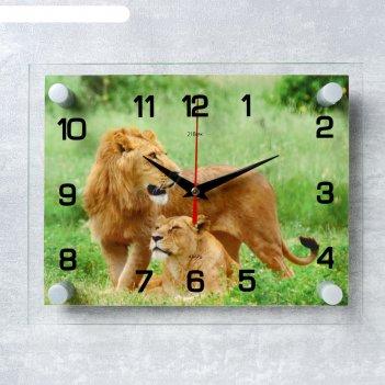Часы настенные, серия: животный мир, лев и львица, 20х26  см, микс