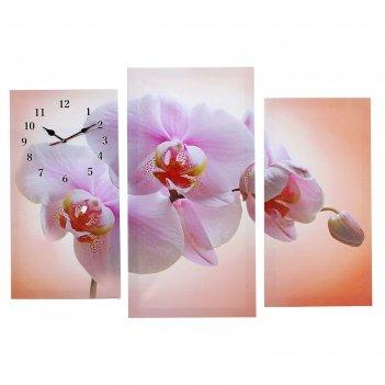 Часы настенные модульные «розовая орхидея», 60 x 80 см