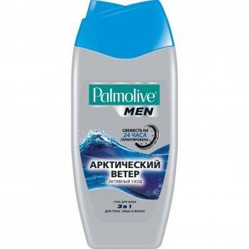 Гель для душа  palmolive men 3 в 1 арктический ветер,   250 мл