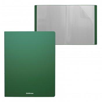 Папка 30 прозр вкладышей а4 пластик erichkrause classic, зеленый 43079
