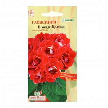 Семена комнатных цветов глоксиния брокада красная f1, цп, 8 шт.
