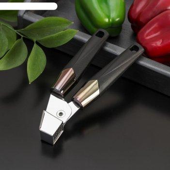 Пресс для чеснока «хром», 19,5x6 см, цвет чёрный