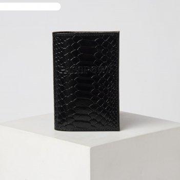 Обложка для паспорта 13,5*0,5*9,5 см, питон черный