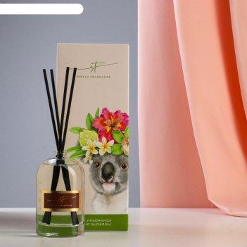 Диффузор ароматический stella fragrance tropic blossom, 100 мл