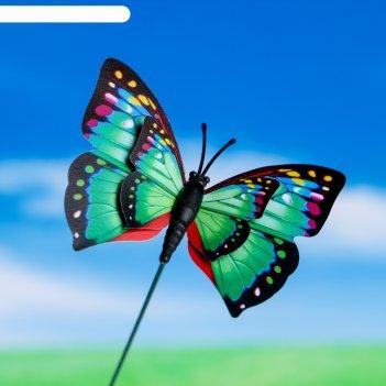 Штекер для комнатных растений бабочка 6*7 см, длина 25см