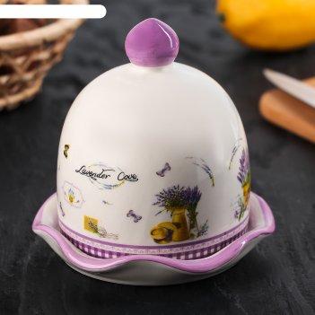 Лимонница «душистая лаванда», 11,5x11,5x11,5 см, цвет белый