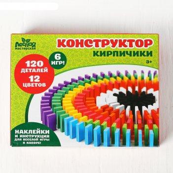 Конструктор кирпичики