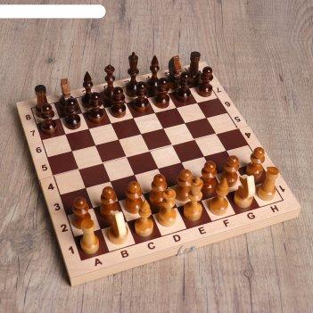 Шахматы школьник (доска дерево 29х29 см,фигуры дерево,король h=7.2 см,пешк