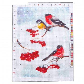 Канва для вышивания с рисунком «снегири», 28 х 37 см