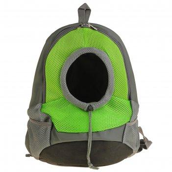 Рюкзак для переноски животных с креплением на талию, 31 х 15 х 39 см, зеле