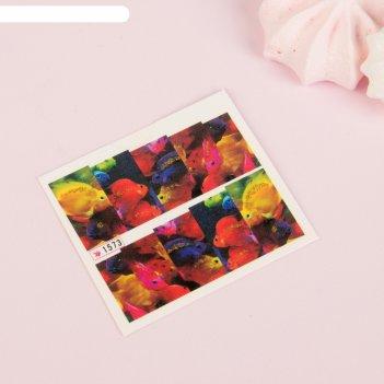 Слайдер-дизайн для ногтей «рыбки», с блёстками, разноцветный