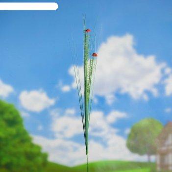 Штекер садовый божьи коровки 75*2*2 см