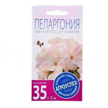 Семена комнатных цветов пеларгония маверик эйплблоссом 4 шт