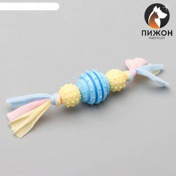 Игрушка жевательная пижон premium на верёвке, 3 элемента, термопластичная