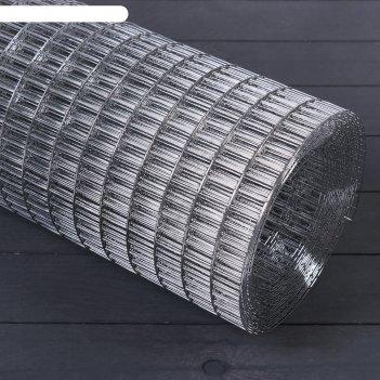 Сетка оцинкованная, сварная 1 x 10 м, ячейка 25 x 12,5 мм, d = 1 мм, метал